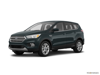 2019 Ford Escape for sale in Richfield Springs NY